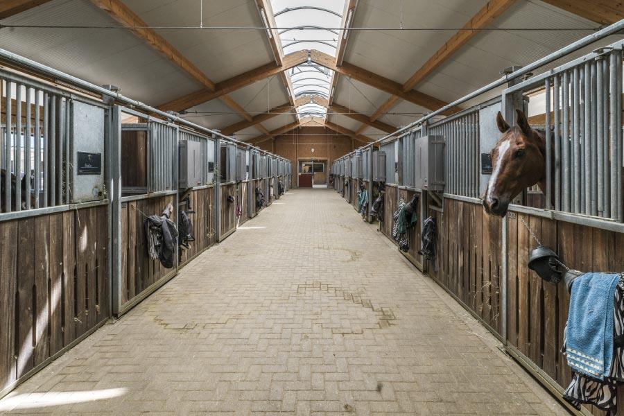 Hubertushof-Stall-11
