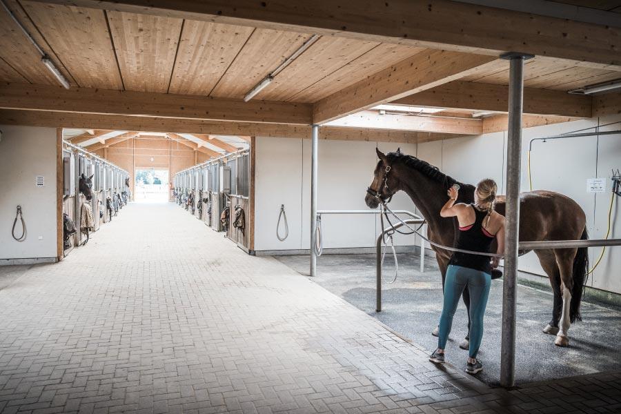 Hubertushof-Stall-06